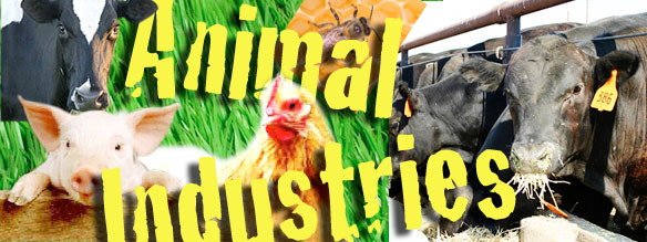 Animal Industries